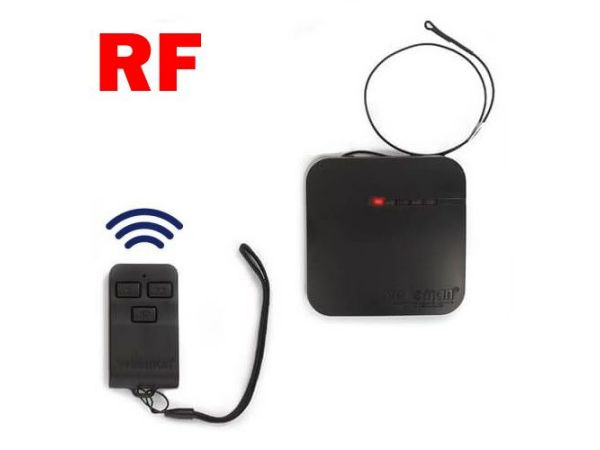 2-Channel RF Remote Control Set
